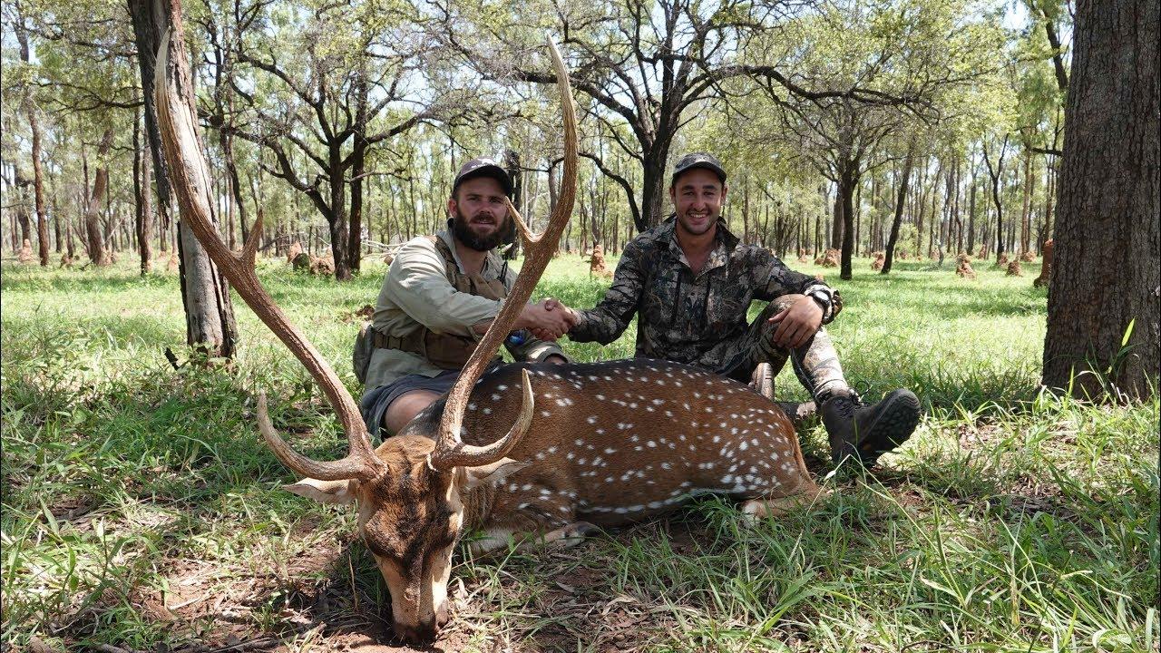 hunting-in-australia