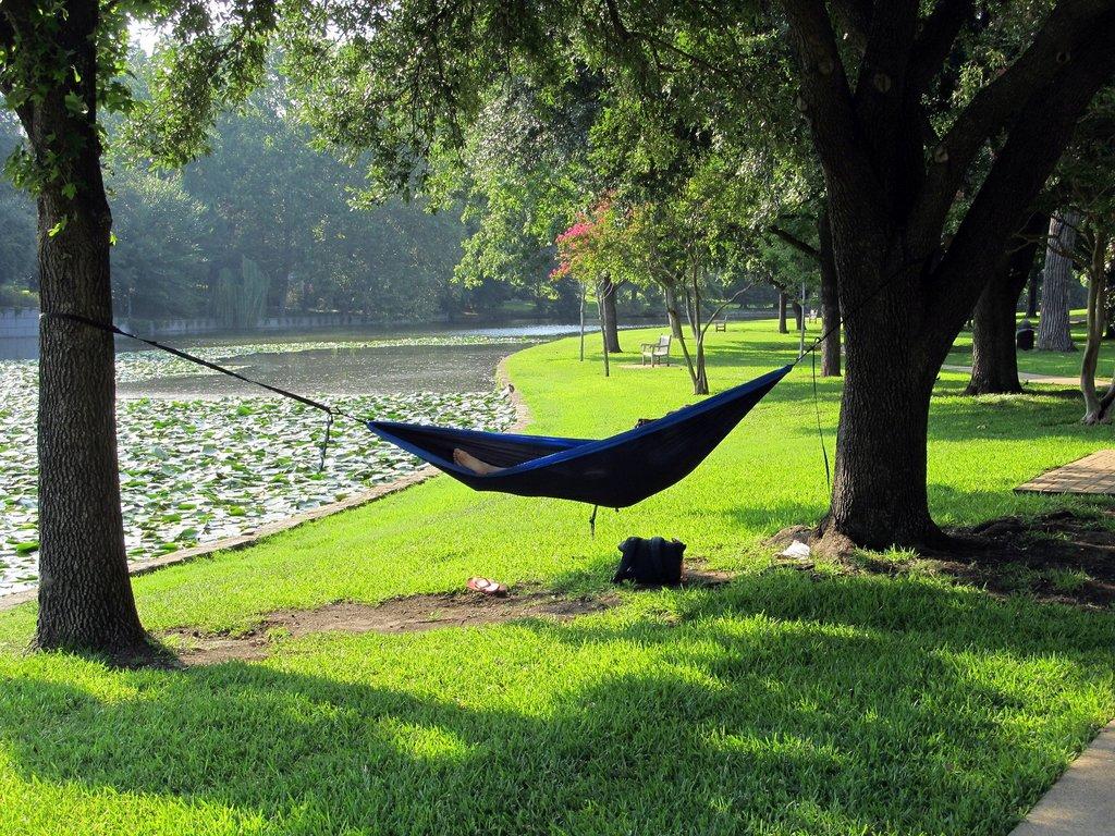 camping-hammocks